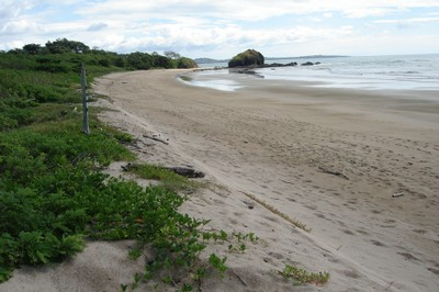 Despite all there is to do in Costa Rica, you may find yourself passing time with long walks on the beach. - small