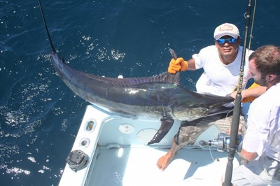 Captain Jason Coffrin with a Marlin - small