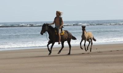 Las Tres Playas Tours Horseback riding tours in costa rica