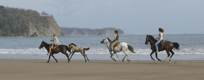 Las Tres Playas Tours Horseback riding tours in costa rica