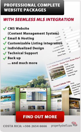 Complete Website Packages with MLS Integration for Real Estate Professionals