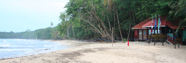 This is a picture taken from Cahuita looking North along its shore line that leads up to the National Park